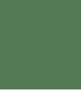 lotuslifelogogruen